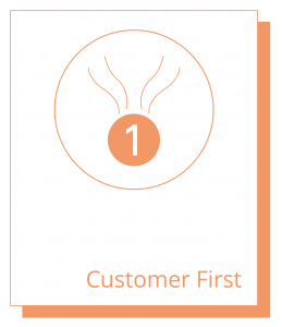 Cubro Values - customer first